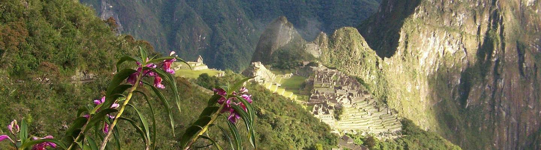 inca-jungle-trek