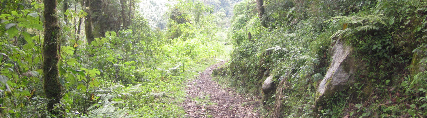 new-inca-trail-discovered