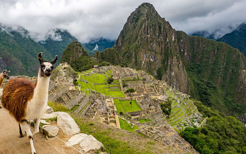 Machu Picchu Facts - For Kids and Adults Alike